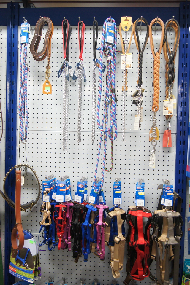 negozio animali noventa vicentina